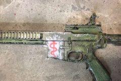 Nemo's AR 57